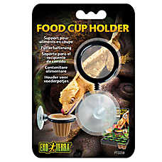 Exo Terra® Reptile Food Cup Holder