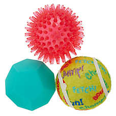 Top Paw® Ball Dog Toys - 3 Pack