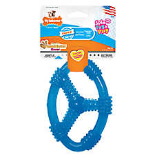 Nylabone® Puppy Chew Ring Dog Toy - (COLOR VARIES)