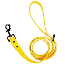 North Fetch Water Resistant Dog Leash