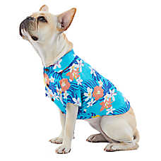 ff60e548f47bf Top Paw® Summer Fun Hawaiian Pet Shirt