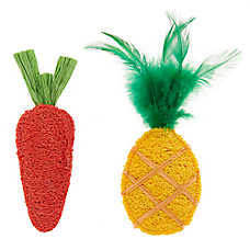 Whisker City® Loofa Pineapple & Carrot Cat Toys - 2 Pack
