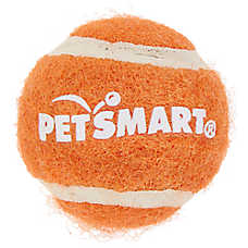 Whisker City® Mini Tennis Ball with Bell Cat Toy - (COLOR VARIES)