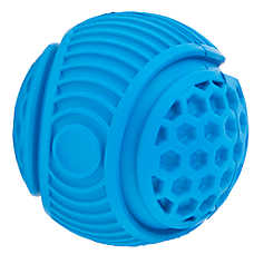 Top Paw® Active Ball Dog Toy - Squeaker