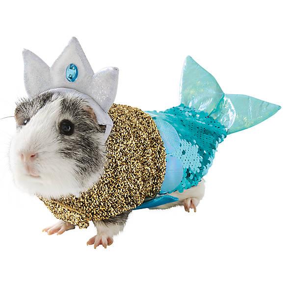 A guinea pig dressed as a mermaid