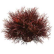 biOrb® Crimson Sea Lily Aquarium Ornament