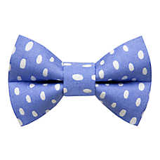 "Sweet Pickles ""The Rainmaker"" Cat Bow Tie"