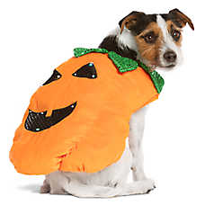 Small Large Dog Costumes