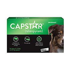 Capstar™ Large Dog Flea Treatment - 6 Count