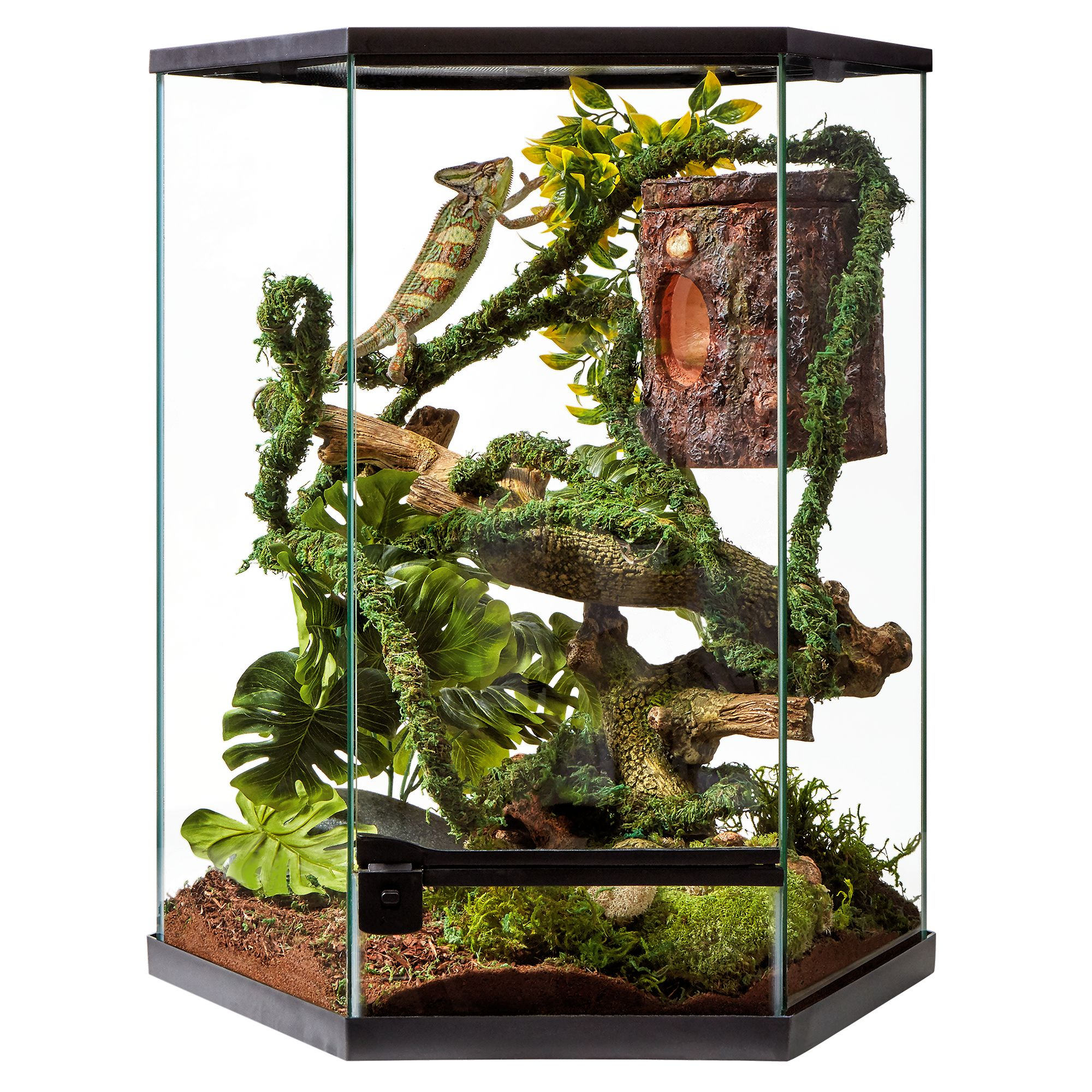 Thrive Tropical Reptile Vertical Hexagon Terrarium 20 Gallon Reptile Terrariums Petsmart