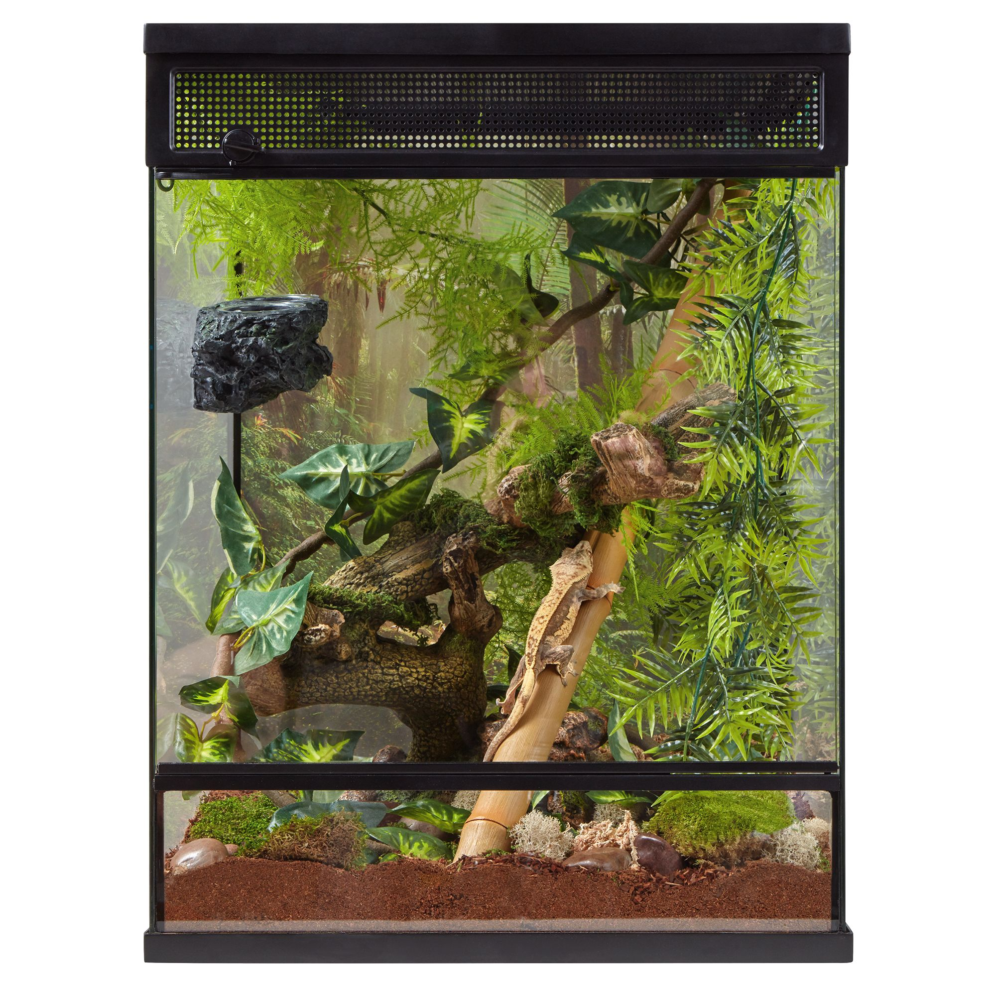 Thrive Tropical Reptile Terrarium Essentials Kit 30 Gallon Reptile Terrariums Petsmart