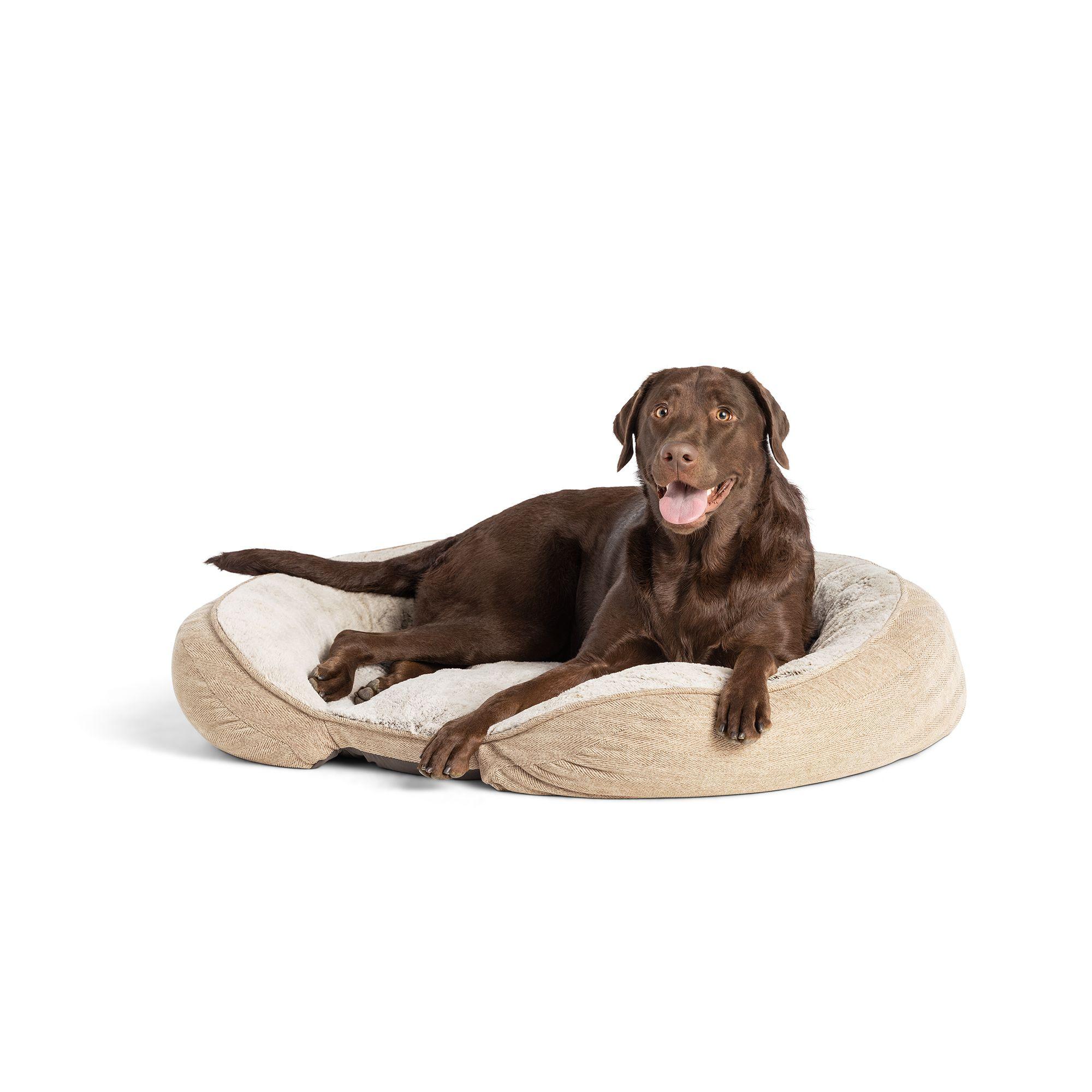 Top Paw Orthopedic Premium Support Oval Lounger Dog Bed Dog Cuddler Beds Petsmart
