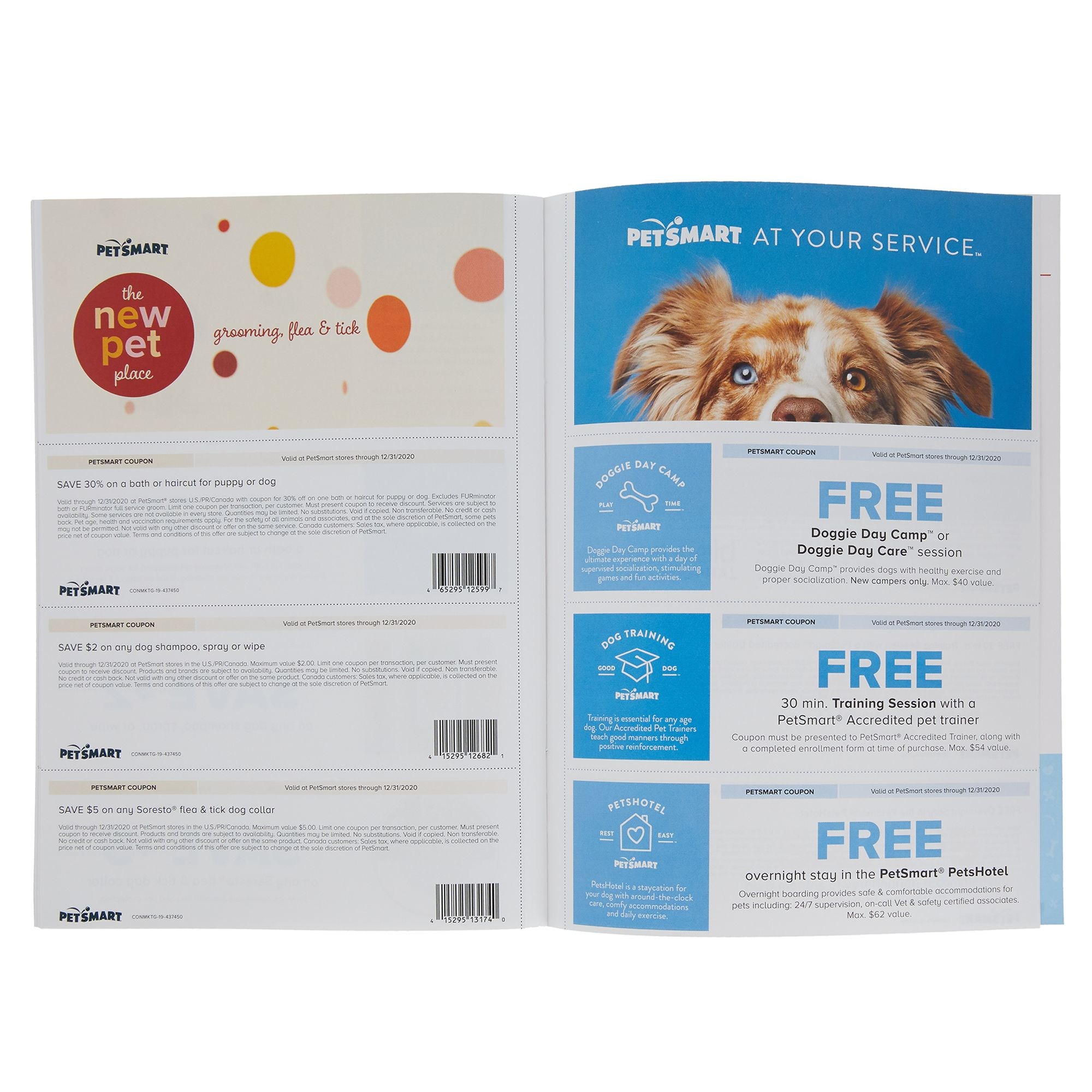 Petsmart Dog Adoption Kit Dog Training Behavior Accessories Petsmart