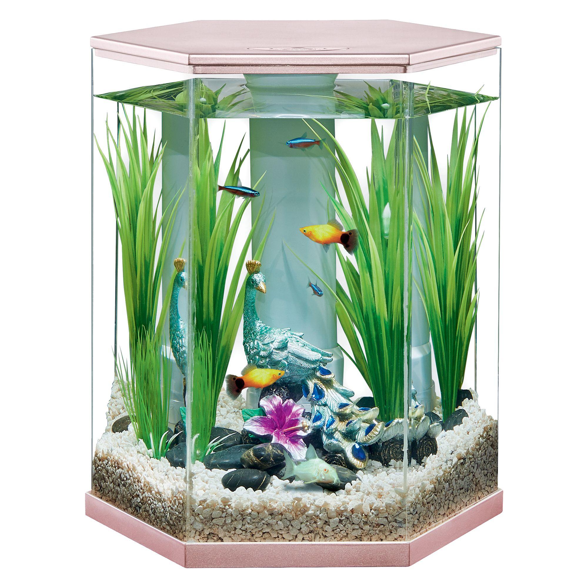 Top Fin Serenity Vivid View 360 Aquarium 3 Gallon Fish Aquariums Petsmart