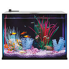 sale $49.99 Top Fin® Dazzle aquatic starter kits, 5 gal.