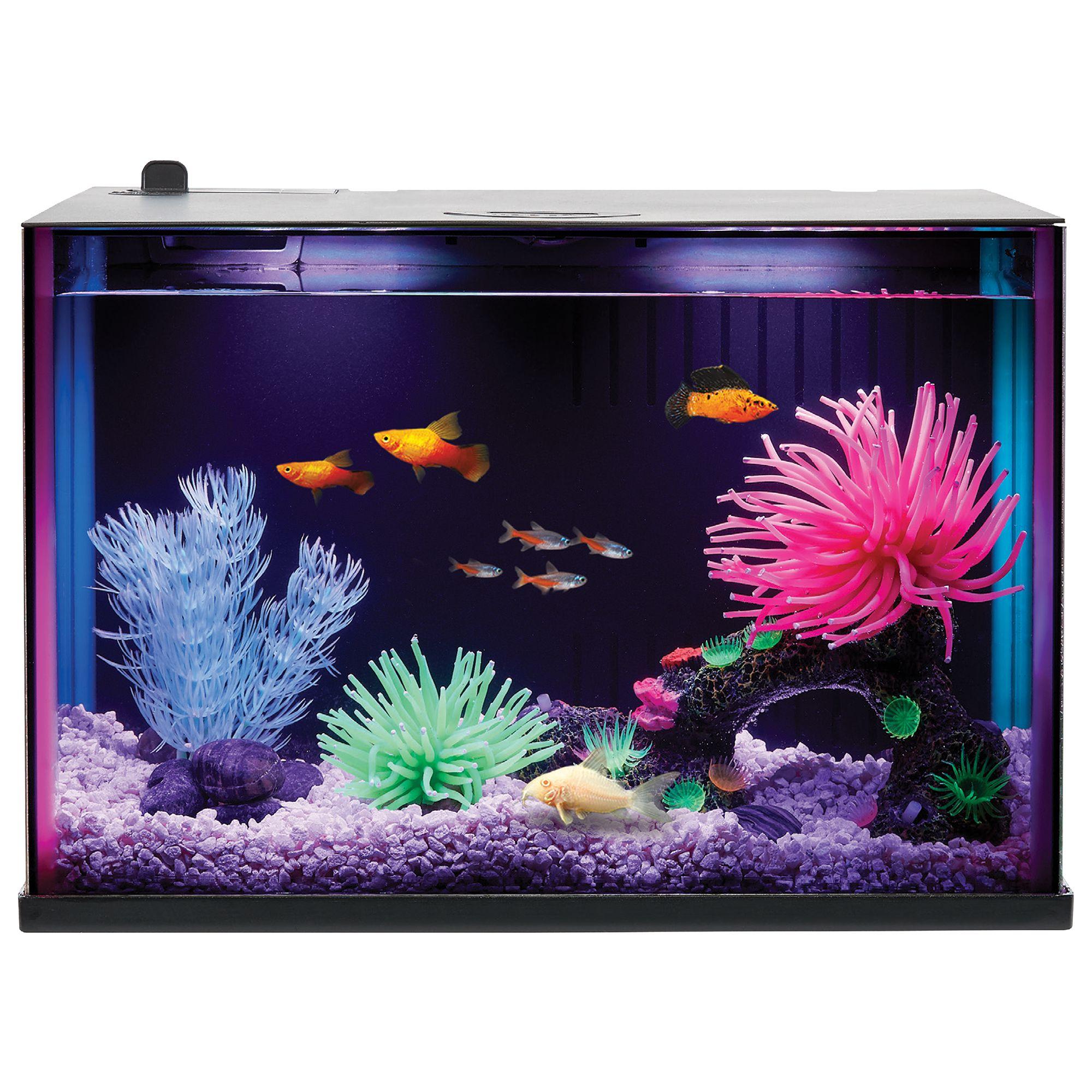 Top Fin® Dazzle Aquarium Starter Kit - 3 Gallon, 7 Color Changing LEDs