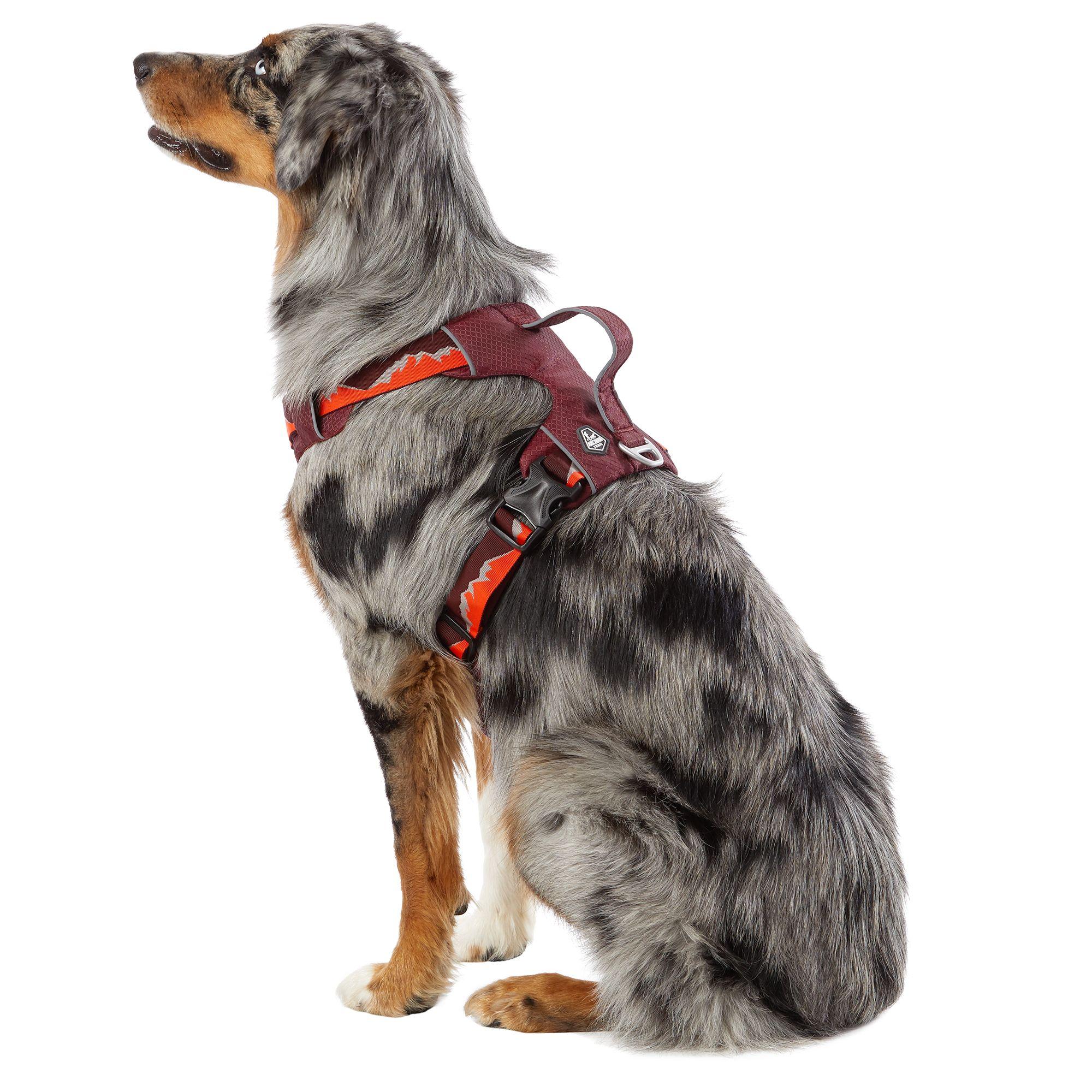 Arcadia Trail™ Lightweight Dog Harness   dog Harnesses   PetSmartPetSmart