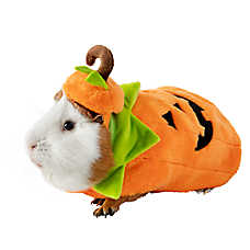 Thrills & Chills™ Guinea Pig Pumpkin Costume