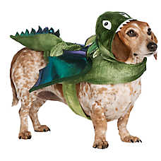 Thrills & Chills™ Pet Halloween Dragon Pet Costume