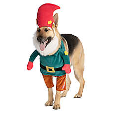 Thrills & Chills™ Pet Halloween Gnome Pet Costume