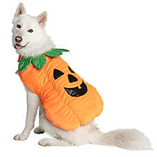 Thrills & Chills™ Pet Halloween Pumpkin Pet Costume