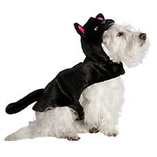 Thrills & Chills™ Pet Halloween Black Cat Pet Costume