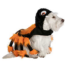 Thrills & Chills™ Pet Halloween Spider Pet Costume