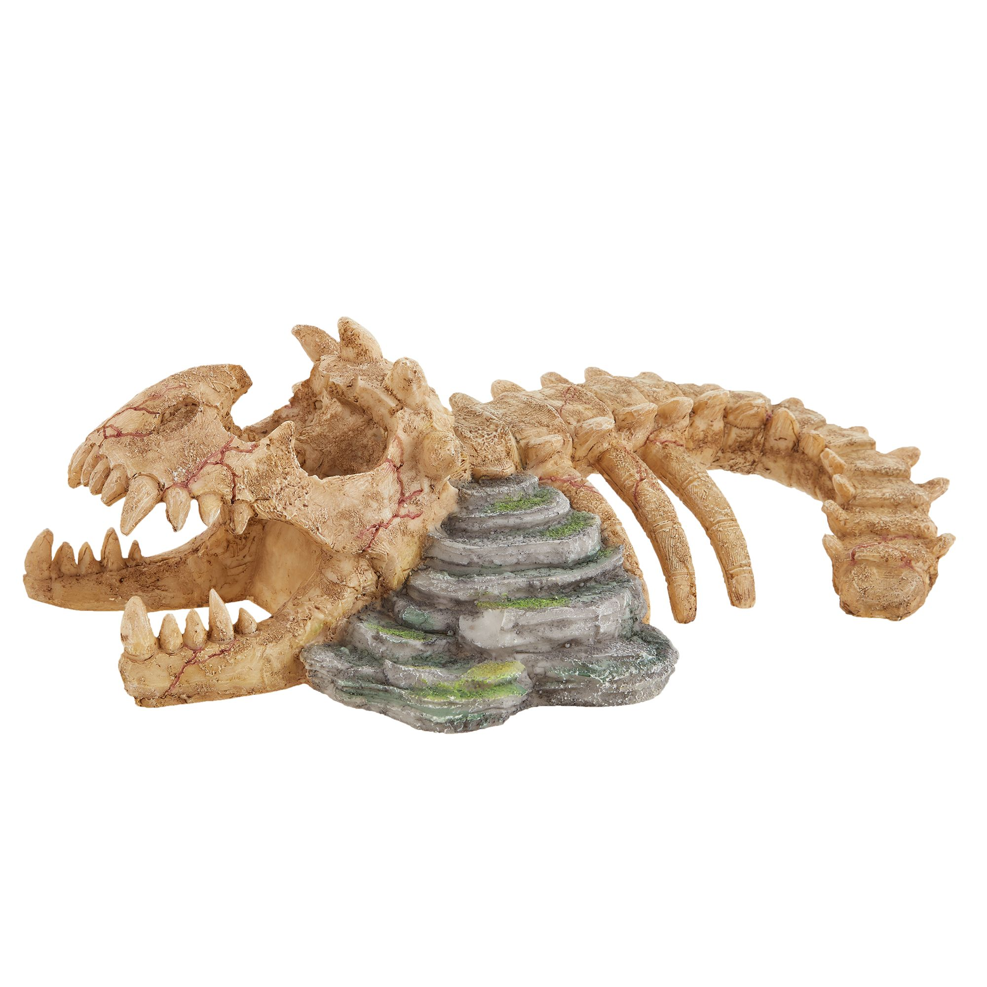 Thrive Dinosaur Skeleton Reptile Decor Reptile Habitat Decor Petsmart