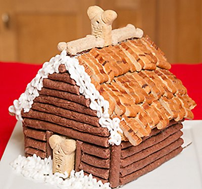 Diy cat gingerbread house petsmart fun fashion gingerbread dog house solutioingenieria Image collections