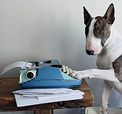 Marc Jacobs' Bull Terrier Tells All