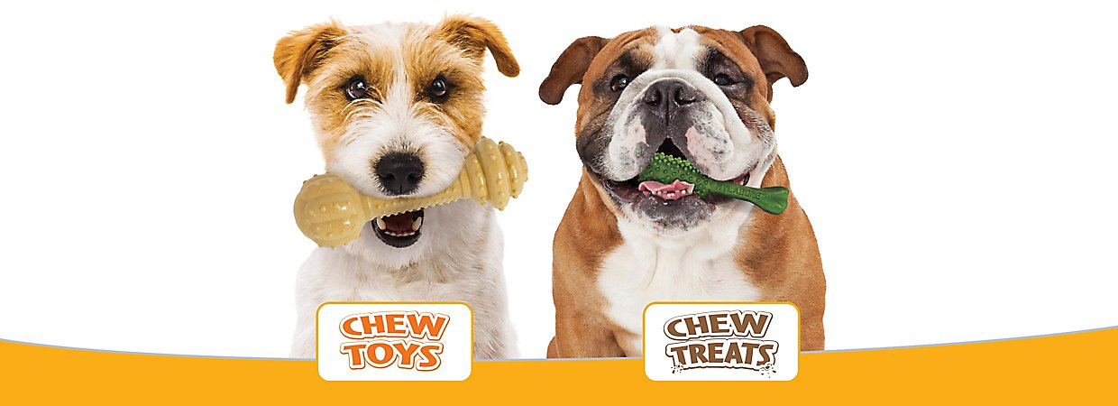Top Rated Dog Treats