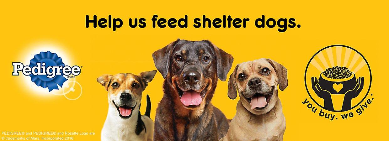 Pedigree® Brand  sc 1 st  PetSmart & Pedigree® Dog Food Puppy Food u0026 Treats | PetSmart