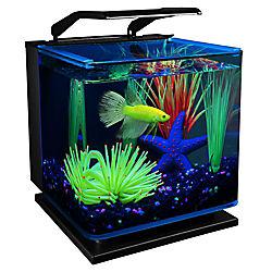 GloFish® 3 Gallon Betta Aquarium Kit