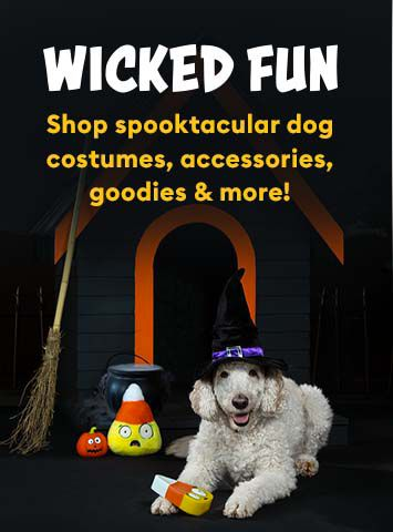 Halloween-Generic Dog