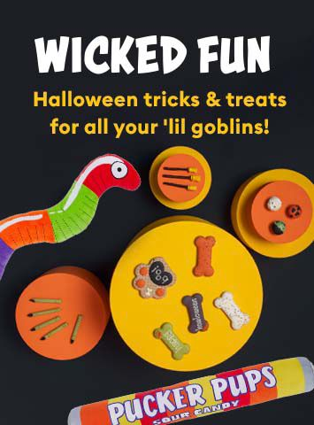 Halloween-Toys & Treats
