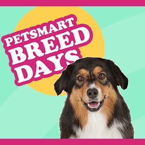 PetSmart Events: Find a Pet Event Near You | PetSmart