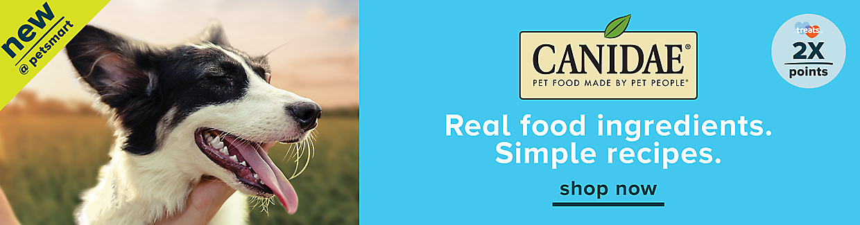 Canidae is now available at PetSmart. Real food ingredients and simple recipes. Also, earn 2X treats™ points on entire stock of Canidae food.  Shop now