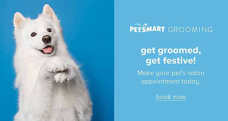 Make your pet's salon appointment today. Book now