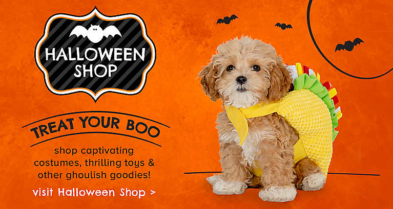 Treat your boo... visit our Halloween Shop