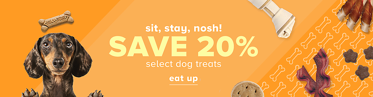 Save 20% on select dog treats