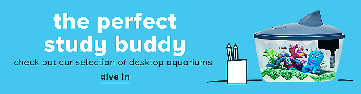 The perfect study buddy- check out our selection on desktop aquariums