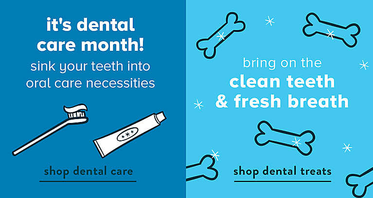 It's dental care month! Sink your teeth into oral care necessities. Shop dental care. Bring on the clean teeth & fresh breath. Shop dental treats