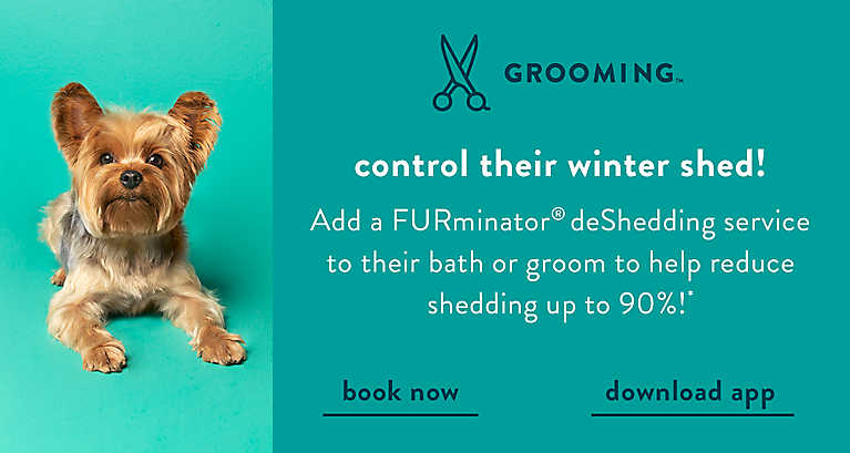 Add a FURminator® deShedding service to their bath or groom to help reduce shedding up to 90%!