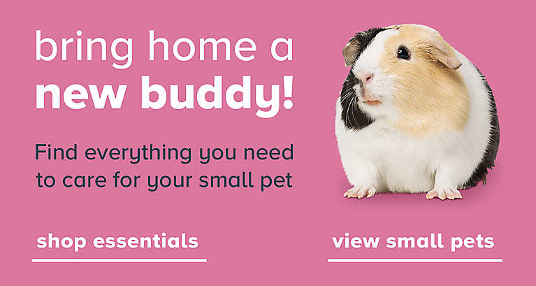 Find everything you need to care for your small pet shop essentials > (left) view small pets > (right)