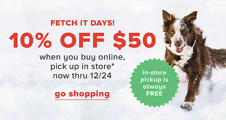 Buy Cat Food Online Fetch