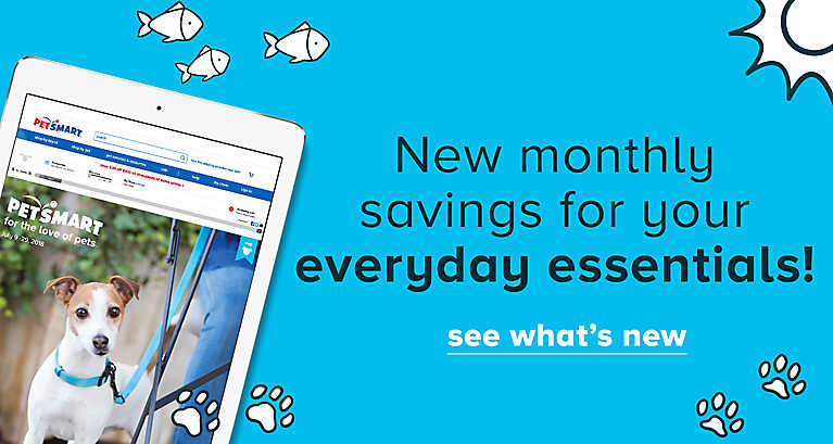 New monthly savings for your everyday essentials! See what's new
