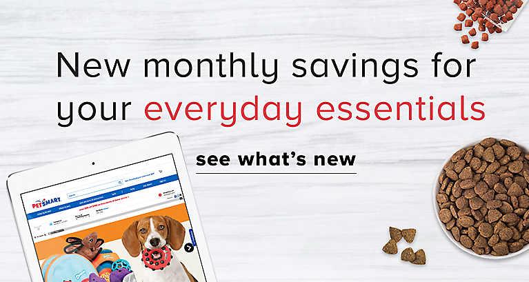Buy Natural Balance Dog Food Online Canada