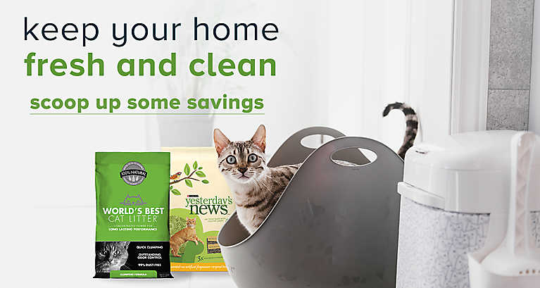 Keep your home fresh and clean