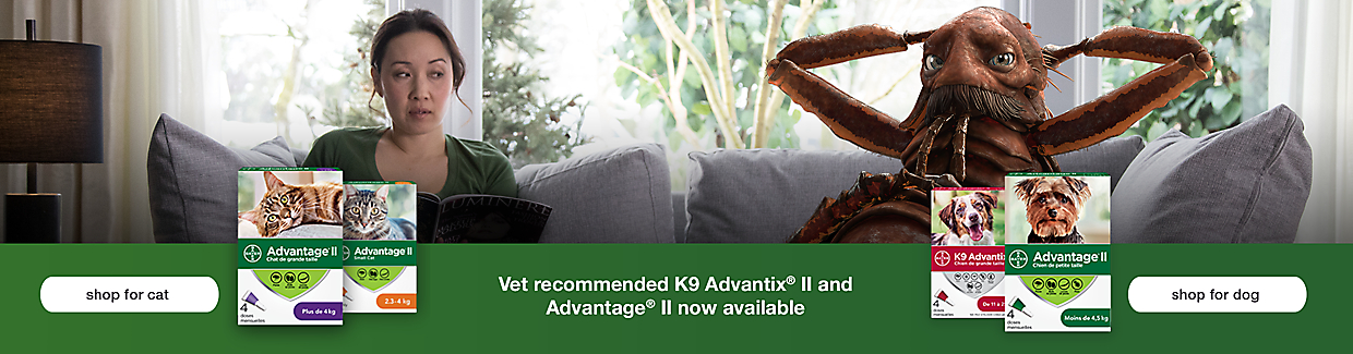 Shop vet recommended K9 Advantix II and Advantage II flea and tick treatment.
