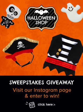 Halloween Sweepstakes Giveaway